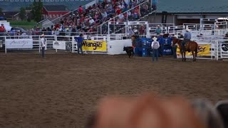 cowboy calf roping in rodeo slow motion