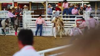 Cowboy Falls Off Bucking Horse Slow Motion