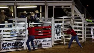 Cowboy gets bucked off bull
