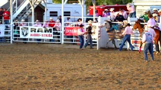 Cowboy Rides 8 Seconds on Bareback Ride at Rodeo