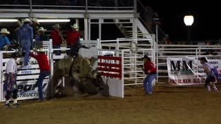 Cowboy rides a bull at the rodeo