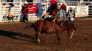Cowboy rides bareback at the rodeo