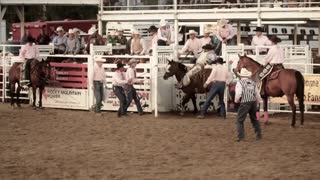 Cowboy Rides Full 8 Seconds at Rodeo on Horse