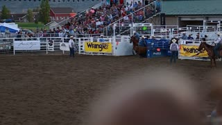 cowboy steer wrestling in rodeo slow motion