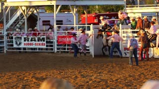 Cowboy Survives 8 Seconds on Horse at Rodeo