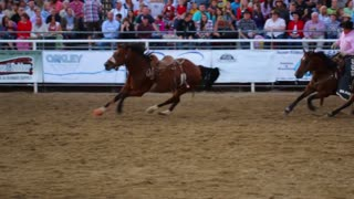 Cowboys Chasing Horse in Rodeo Arena