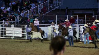 Cowboys steer wrestling at the rodeo