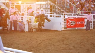 Cowboys Miss Steer at Rodeo