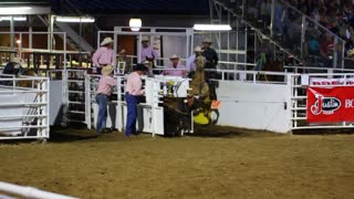 Cowboys Rope Head and Feet at Rodeo Slow Motion