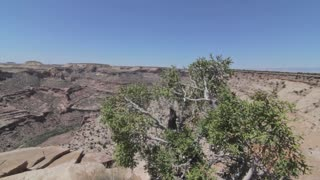 desert jib shot of grand canyon
