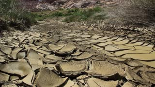 Desert streambed drying up