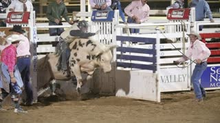 Editorial a cowboy and bull at the PRCA Oakley rodeo slow motion