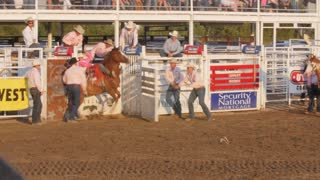 Editorial Cowboy rides barback in PRCA rodeo event