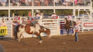Editorial Cowboy rides bareback in PRCA rodeo event