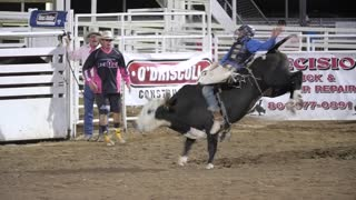 Editorial cowboy riding big bull at the PRCA Oakley rodeo slow motion