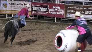 Editorial rodeo clown dodges giant bull at a PRCA rodeo
