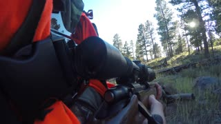 Elk hunter holds rifle and walks through woods