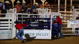 Extreme bull riding at the rodeo