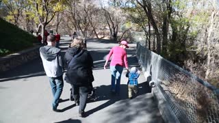 Families walking at the zoo