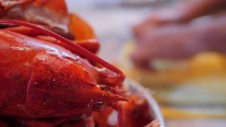 Family crack fresh lobster for their dinner in home