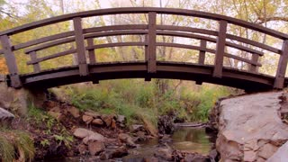 Footbridge over stream with fall leaves