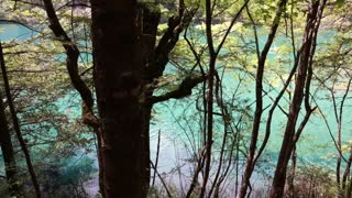 forest lake in jiuzhaigou valley national park in china dolly shot