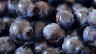 Fresh picked basket of wild blueberries dolly shot