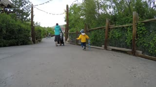 Gimbal shot of mother and toddler at the Hogle zoo