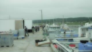 group of fishermen in the harbor at nova scotia