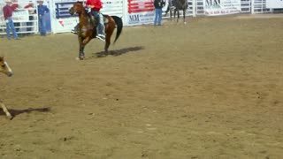 Horses running around rodeo ring