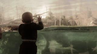 kids watching a polar bear swim