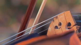 man plays violin closeup