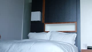 Man relaxes in modern hotel on bed