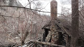 Old Burned Cabin in woods