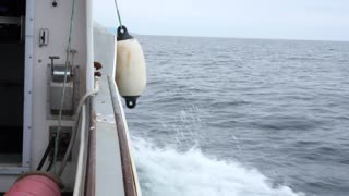 People On A Commercial Fishing Boat In Cape Breton Island