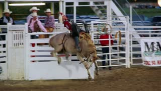 Riding a saddle bronc at the rodeo