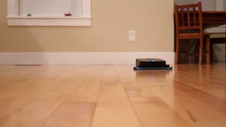 Robot Mop Cleans The Floor Inside Home