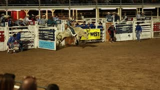 rodeo bull rider slow motion