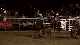 Team roping at the rodeo