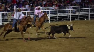 Team Roping Cowboys Miss Steer Slow Motion