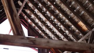 The rafters in the attic of a barn