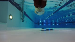 Timelapse underwater low shot of man swimming in clean pool