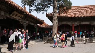 tourists in the forbidden city garden at beijing china