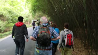 tourists walking at the giant panda breeding research center in chengdu