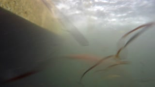 Underwater shot of a large ocean fishing boatin water