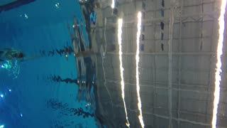 Underwater shot of man swimming freestyle at pool