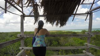 A Tourists On A Wooden Tower Above A Mangrove Forest Jungle