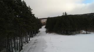 Aerial A Road Going Through Frozen Winter Forrest