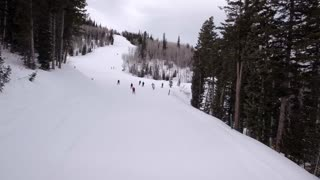 Aerial Shot Of Tourists Downhill Skiing In Pine Trees At Mountain Ski Resort