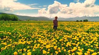 Aerial Slow Motion Of A Cute Boy Running Through Dandelions In A Field